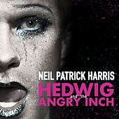 Sugar Daddy by Hedwig and the Angry Inch