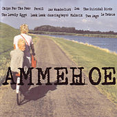 Ammehoelahop by Various Artists