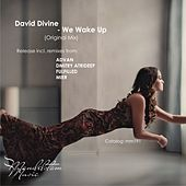We Wake Up by David Divine
