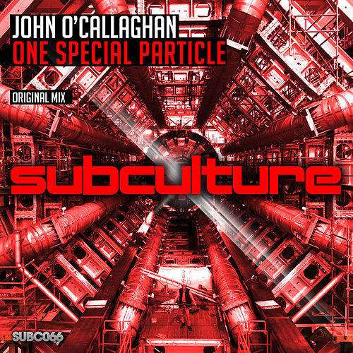 One Special Particle by John O'Callaghan
