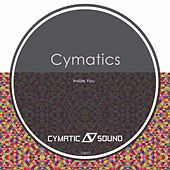 Inside You by Cymatics