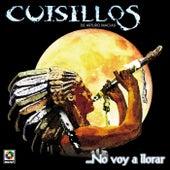 No Voy A Llorar by Banda Cuisillos