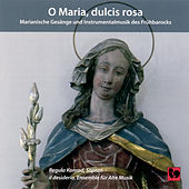 O Maria, dulcis rosa by Various Artists