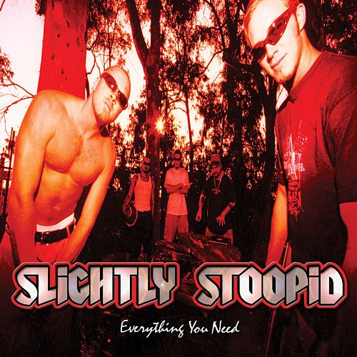 Everything You Need by Slightly Stoopid