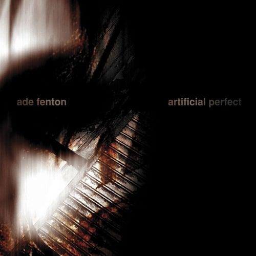 Artificial Perfect by Ade Fenton