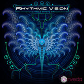 Rhythmic Vision by Various Artists