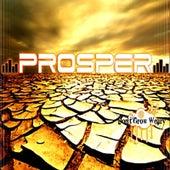 Don't Grow Weary by PROSPER