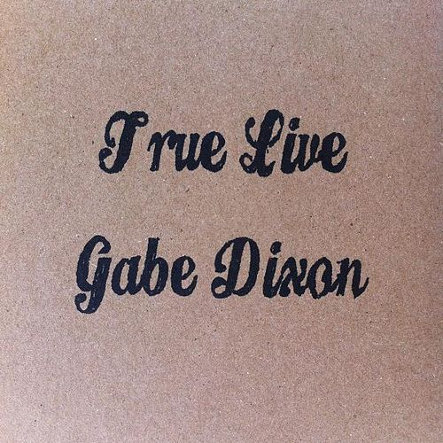 True Live by Gabe Dixon