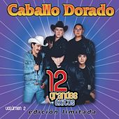 12 Grandes exitos Vol. 2 by Caballo Dorado