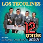 12 Grandes exitos Vol. 2 by Los Tecolines