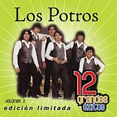 12 Grandes exitos Vol. 2 by Los Potros