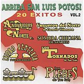 Arriba San Luis Potosi, Vol. 2 by Various Artists