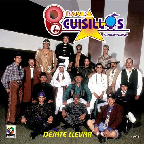 Dejate Llevar by Banda Cuisillos