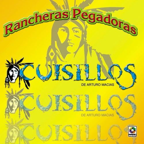 Rancheras Pegadoras by Banda Cuisillos