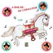 A Bailar De Caballito by Mi Banda El Mexicano