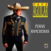 Puras Rancheras - Pepe Aguilar by Pepe Aguilar