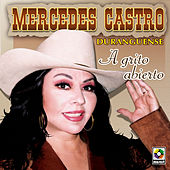 A Grito Abierto by Mercedes Castro