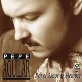 Por El Amor De Siempre by Pepe Aguilar
