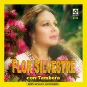 Flor Silvestre Con Tambora by Flor Silvestre