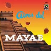 Aires Del Mayab by Los Caminantes