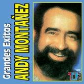 Grandes Exitos de Andy Montañez by Andy Montañez