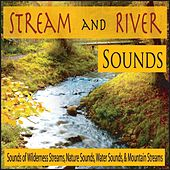 Stream and River Sounds: Sounds of Wilderness Streams, Nature Sounds, Water Sounds, & Mountain Streams by Robbins Island Music Group