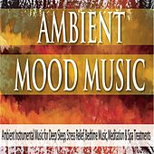 Ambient Mood Music: Ambient Instrumental Music for Deep Sleep, Stress Relief, Bedtime Music, Meditation & Spa Treatments by Robbins Island Music Group