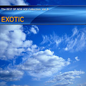 Best of New Age Collection Vol.9 - Exotic by Various Artists