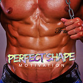 Perfect Shape Motivation by Various Artists