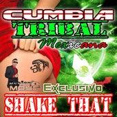 Cumbia Tribal Mexicana (Shake That) by Dj Moys