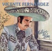 Motivos Del Alma by Vicente Fernández