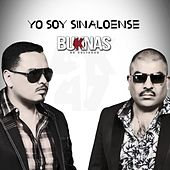 Yo Soy Sinaloense by Los Buknas De Culiacan