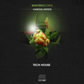 Selected Techouse by Various Artists