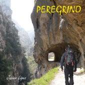 Peregrino by Javier López