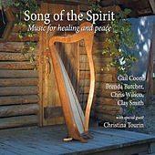Song of the Spirit by Various Artists