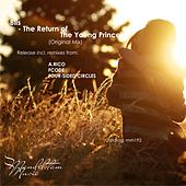 The Return of The Young Prince by Blis