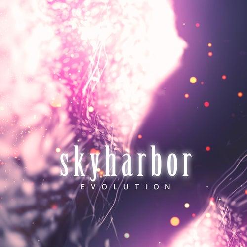 Evolution by Skyharbor