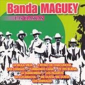 Las Clasicas Banda Maguey by Banda Maguey