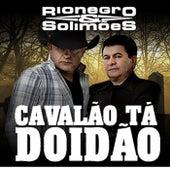 Cavalão Ta Doidão by Rionegro & Solimões