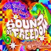 Sound Of Freedom by Bob Sinclar