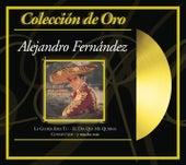 Coleccion De Oro: Grandes Exitos A La Manera by Alejandro Fernández