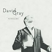 Foundling by David Gray