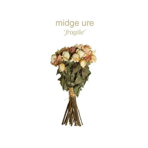 Fragile by Midge Ure