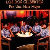 Por Una Mala Mujer by Los Dos Gilbertos