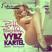 Pretty Position - Single by VYBZ Kartel