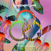 Mermaid of Salinas by Basement Jaxx