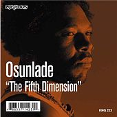The Fifth Dimension by Osunlade