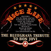 The Bluegrass Tribute To Bon Jovi: Nice Life by Pickin' On