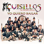 Yo Quiero Bailar by Banda Cuisillos