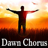 Dawn Chorus by Nature Sound